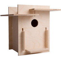 Green Gifts For Animal Lovers BOX FOR BIRDS DIY BIRDHOUSE - $33 ? Green Holiday Gift Guide