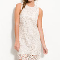 Lush Lace Overlay Sleeveless Shift Dress (Juniors) | Nordstrom