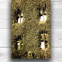 Architectural photography Ivy Windows City Hall brown sephia  wall art  architecture Industrial home decor  4x6 Fine Art Photography Print