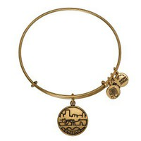 Boston Bangle - Alex and Ani