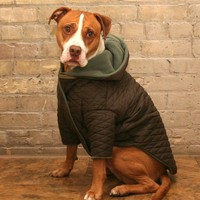 FleeceLined Reversible Puffy Dog Jackets  by LuckysLoungewear