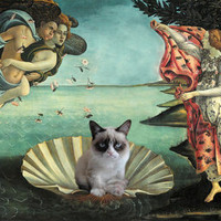 Birth Of Grumpy Cat Art Print by Katherine Marshall | Society6