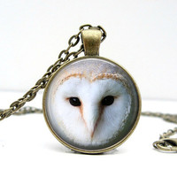 Barn Owl Necklace Glass Art Pendant Picture Pendant Photo Pendant Handcrafted Jewelry by Lizabettas
