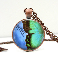 Butterfly Wing Necklace Glass Art Pendant Picture Pendant Photo Pendant