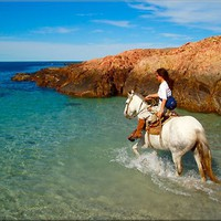 ride a horse on the beach/in water