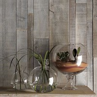Shane Powers Fish Bowls | west elm
