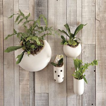 Shane Powers Ceramic Wall Planters | west elm