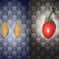 Food Icons | Flickr ? Condivisione di foto!