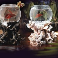 Rare Unusual Betta Fish Bowls - Opulentitems.com