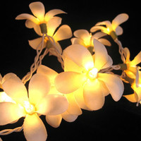 20 x Orchid asian flower handmade string light deco by cottonlight