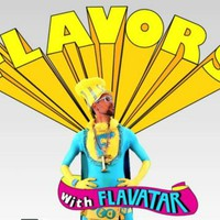 THE FUNGINEERS- FLAVORS WITH FLAVATAR EP: 1 on Vimeo