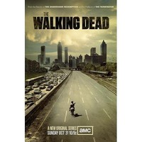 (11x17) The Walking Dead TV Poster