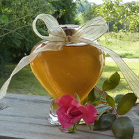 Heart Jar of Golden Honey Glass Jar 9oz Antique Style Raw Unfiltered Tennesse Honey Unique Gift Vintage