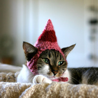 Jovie the Elf Cat Hat Christmas Pet Costume
