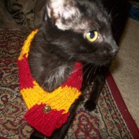 Harry Potter Pet Scarf