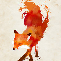 Vulpes vulpes Stretched Canvas by Robert Farkas | Society6