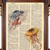 BEAUTIFUL JELLYFISH Vintage Print Upcycled Art by TreasuresByUs