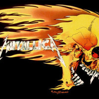 Metallica - Skull and Flames Posters at AllPosters.com