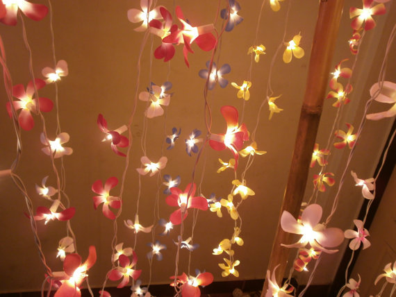 String Lights Indoor B And Q : Frangipani Flower Hanging string lights from StringLightShop on