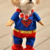 Cute Realistic Superman Dog Costume