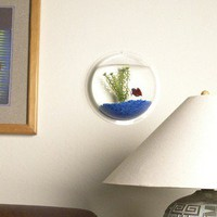 Wall Mount Fishbowl - Clear