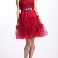 Pleated Tulle Dress