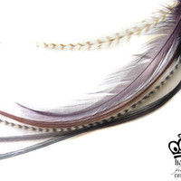 6 FEATHER HAIR EXTENSIONS 6 Twilight Series by hauteFEATHERcouture