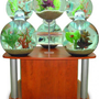 Unique Fish Tanks - Opulentitems.com