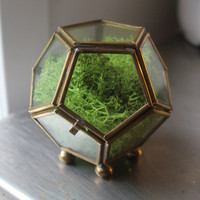 Little Vintage Polyhedron Multi-Sided Brass and Glass Terrarium Box. 2.5 x 2.5inches.  Geometric , Vintage, Awesome.