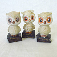 Vintage Owl Figurines Ceramic Weather Owls by ItchforKitsch