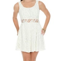 Illusion Lace Skater Dress | Shop Dresses at Wet Seal
