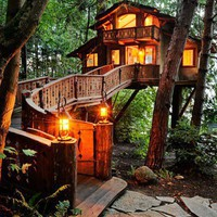 Whimsical Spaces and Enchanting Places / Inhabited Tree House, Seattle Washington