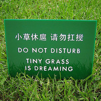 $12.50 Funny Chinglish Sign  Tiny Grass is Dreaming by SignFail on Etsy