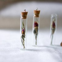 botanical vial necklace preserved specimen by StudioBotanica