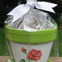 Painted Flower Pot Gift Set Floral Terra by EllensClayCreations