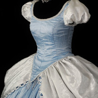 Adult Silk Deluxe Cinderella Costume Custom Made