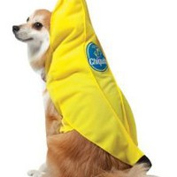 Amazon.com: Rasta Imposta Chiquita Banana Dog Costume, X-Small: Pet Supplies