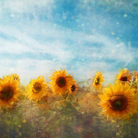 Sunflower Flowers Photograph, Art Print | Luulla