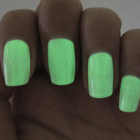 Day Glow 16.7ml Glow in the Dark Nail Polish
