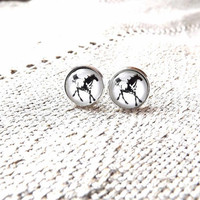 Horse earrings- Horse ear posts- Animal photography- Horseshoe Earrings- Horse jewelry