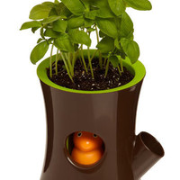 Thirsty Squirrel Self-Watering Plant Pot | Mod Retro Vintage Decor Accessories | ModCloth.com