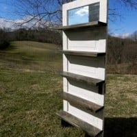 EcoVolveNow Antique Door Bookshelf