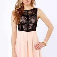 TFNC Dimona Black and Peach Lace Dress