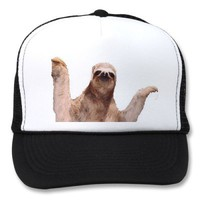 sloth hat from Zazzle.com