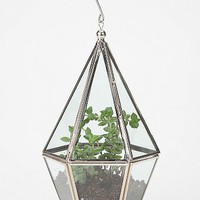 Faceted Terrarium