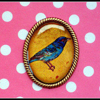 blue bird brooch <3