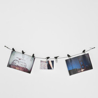 Urban Outfitters - Birds on a Wire Photo Clip - Set of 8