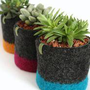 4&quot; Bottom Band Plant Cozy - Felted Wool