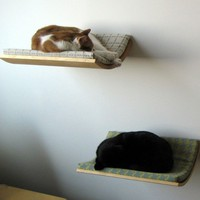 Curve Pet Bed by Akemi Tanaka