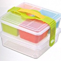 Picnic Lunch Bento Box Two Tiers #3943